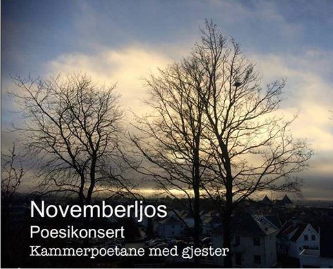 novemberljos2